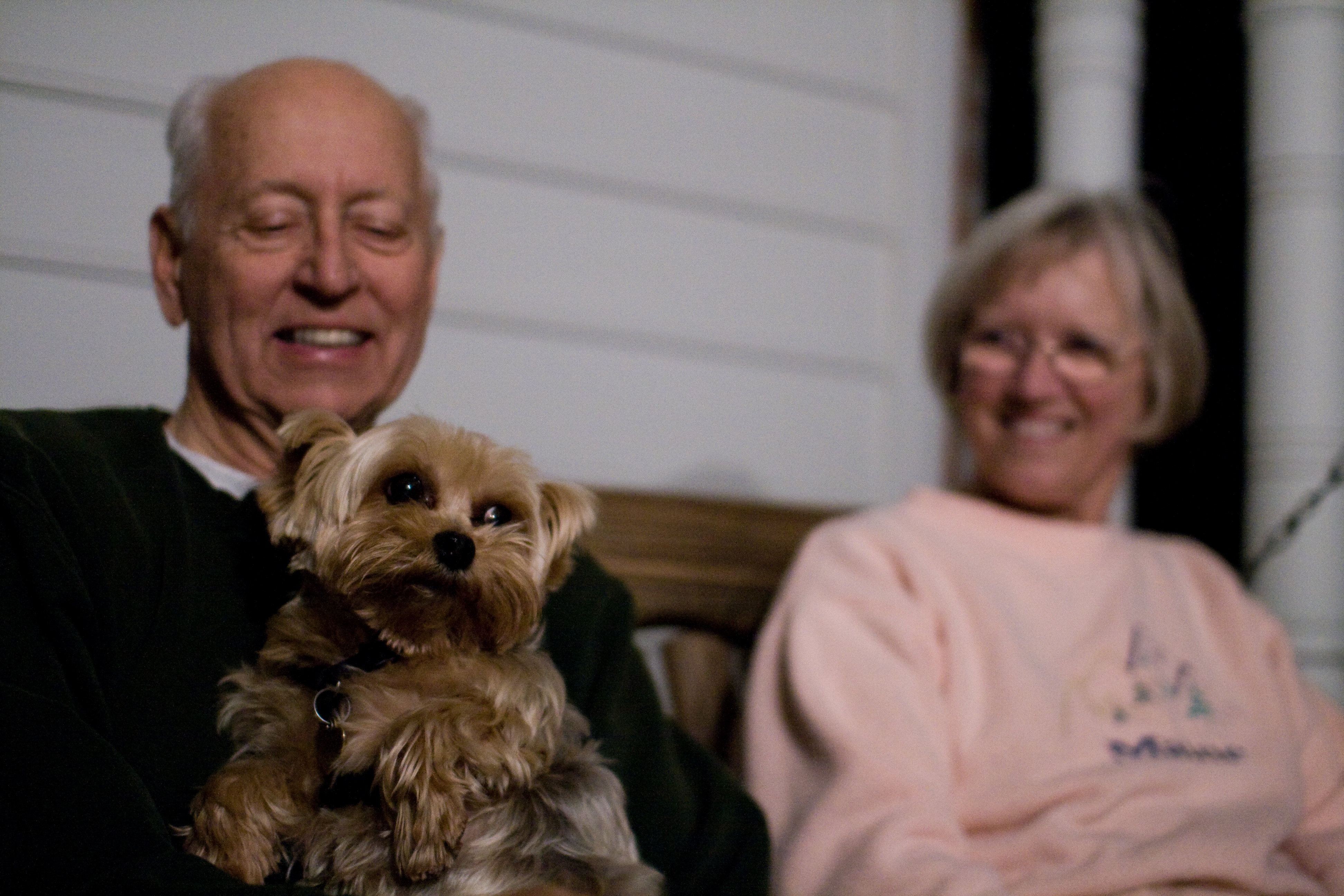 old people with yorkie health