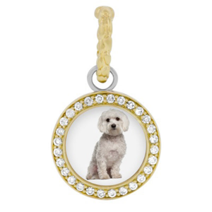 """Hellmuth Jewelry"" dog collection"