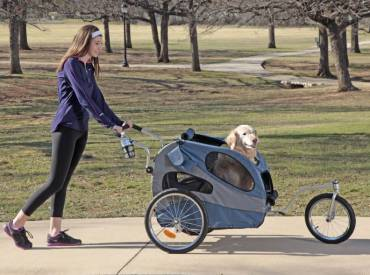 The Best Dog Strollers [For small and large dogs]