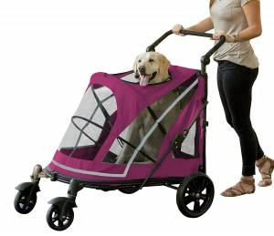 Pet Gear Expedition Dog Stroller