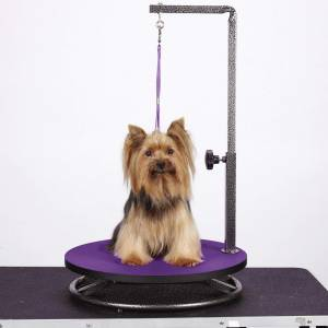 Small dog grooming table