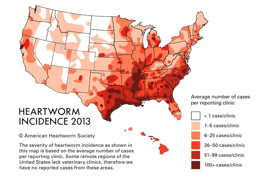 hearworm map us